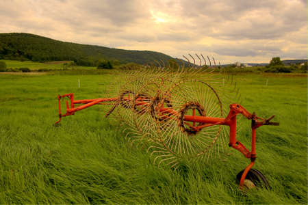 agricultural engineering: hay turning machine on a green meadow  in a country area in front view