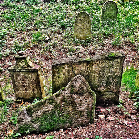 hope: On a Hill in Czech Republic a jewish cemetery