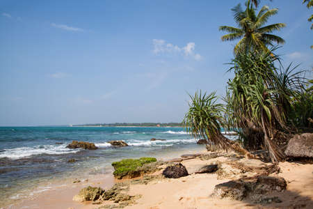 A dream beach at the Indian Ocean with luminous blue sky and a turquoise-blue glittering ocean with coconut palm trees at a fine sandy beach Stock Photo