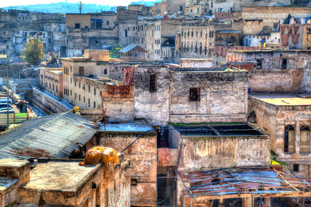 In the famous district of the tanners in the Kingdom City in Fes in Morocco, Africa, hides will be groomed, tanned and colored and finished to leather