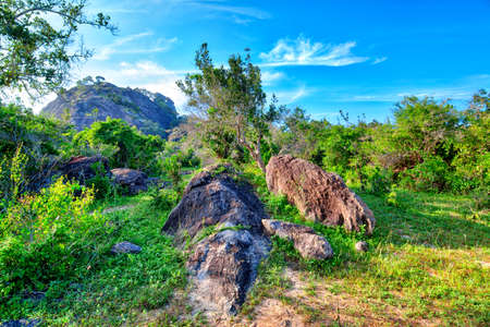 Stunning landscape with rocks in the Yala National Park on the tropical island of Sri Lanka in the Indian Ocean Reklamní fotografie