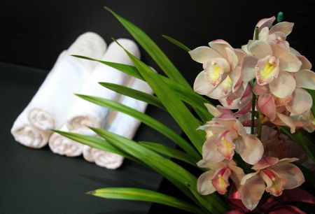 Orchids with white towels in the background at a day spa