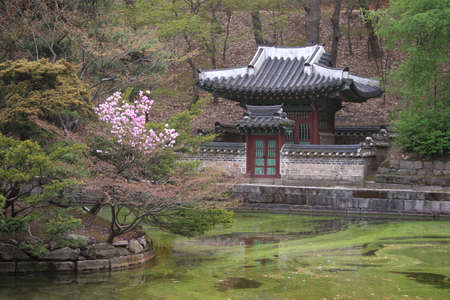 buddhist structures: Palace in Korea Stock Photo