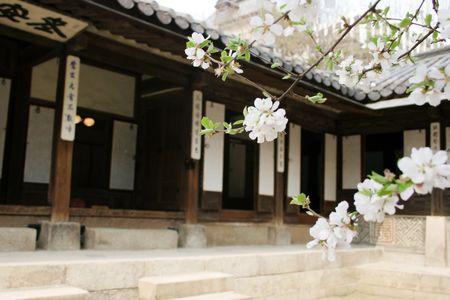 Biwon ist ein sechs Hektar gro�en privaten Garten am Changdeok Palace, Seoul, S�dkorea
