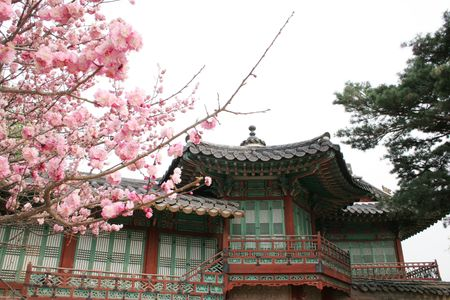 Biwon is a six-acre private garden at Changdeok Palace, Seoul, South Korea Stock Photo - 378219