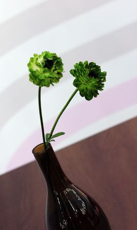 Beautiful green flowers in a vase - home interiors