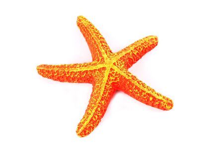 Bright orange starfish isolated on white photo