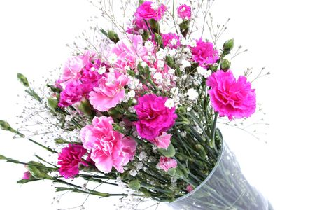 Vase of pretty pink carnations isolated on a white background