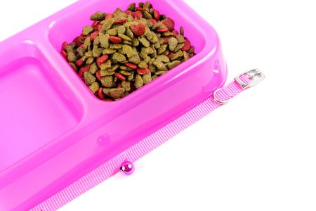 pet food: Bowl of pet food and water isolated. Stock Photo