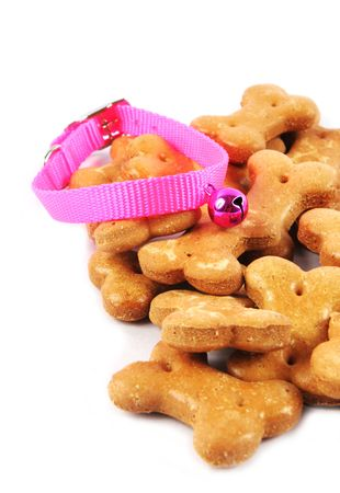 catnip: Pet supplies Stock Photo