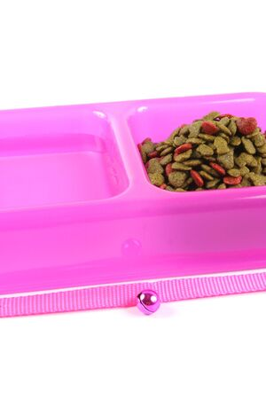 catnip: Bowl of pet food and water isolated on a white background.