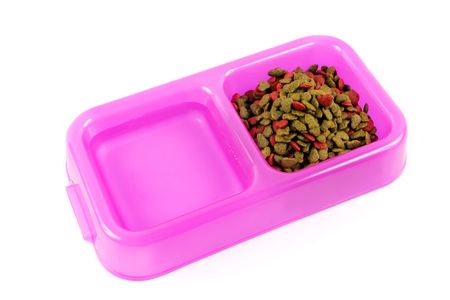 pet food: Bowl of pet food and water isolated on a white background.
