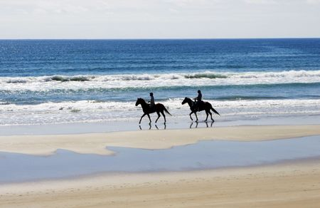 beach animals: People on the beach riding horses. Stock Photo