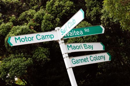street name sign: New Zealand street signs - travel and tourism.