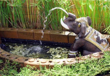 Elephant statue in an Asian water garden. photo