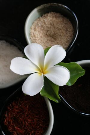 Thai herbs with a flower in the middle - travel and tourism.