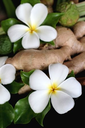 ginger flower plant: Tropical frangipani flowers and ginger from Thailand. Stock Photo