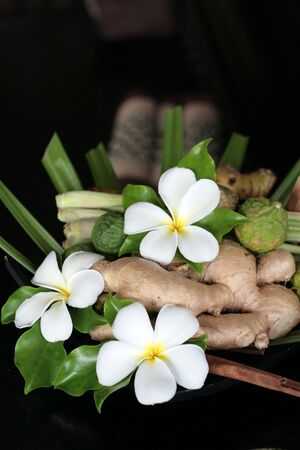 ginger flower plant: Flowers and ginger from tropical Thailand.