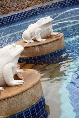 Beautiful swimming pool with a frog statues. photo