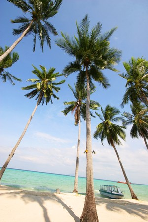 Beautiful beach in tropical Thailand - travel and tourism. photo
