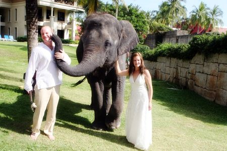Gorgeous bride and groom pose with an elephant on their wedding day.