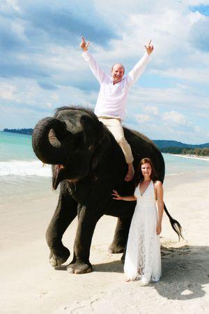 Bride and groom with an elephant on the beach.