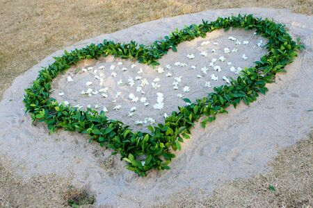 mother earth: Plants in the shape of a heart.
