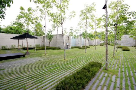 asian house plants: Modern zen garden area - theme urban nature. Stock Photo