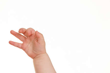 free plates: Hands of a small child in front of a white background