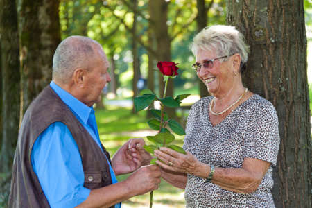 Mature senior couple is in love. Man hands over a rose. Stock Photo - 7856880