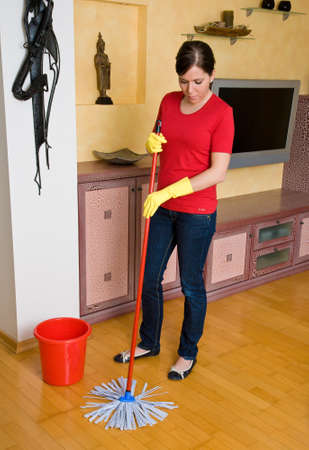 Young housewife in her apartment clean. Stock Photo - 8007654