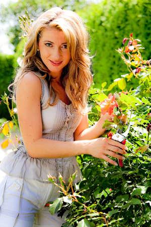 garden shears: Mujer con cizallas jard�n y Rose. Cuidado del jard�n