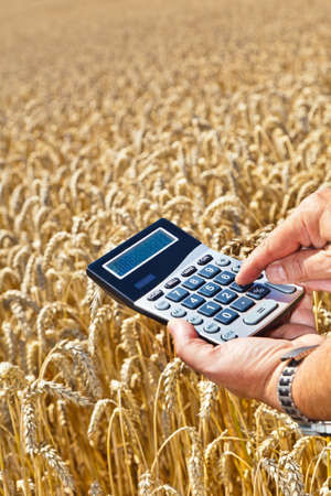peasantry: A farmer with a calculator on cereal box. Subsidies in agriculture Stock Photo