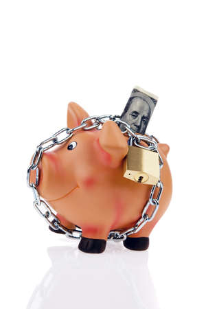 provisions: A piggy bank with money and the dollar chain. Security when saving and investing money.