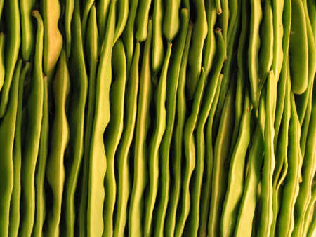 naturally: fluted pattern of assorted bright green beans