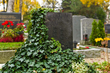 all seasons: a grave stone in a cemetery. overgrown with ivy Stock Photo