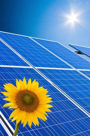 photovoltaic power station: renewable, alternative solar energy  solar energy power plant
