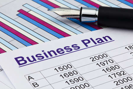 start up: the business plan for a company or business establishment  planning a young entrepreneur