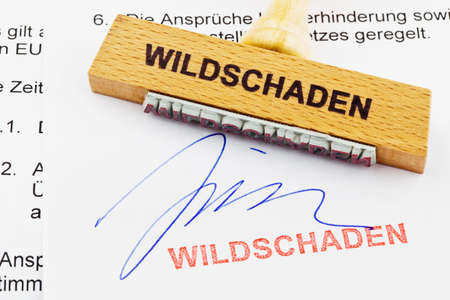 household accident: a stamp made of wood lying on a document  german inscription  game damage Stock Photo