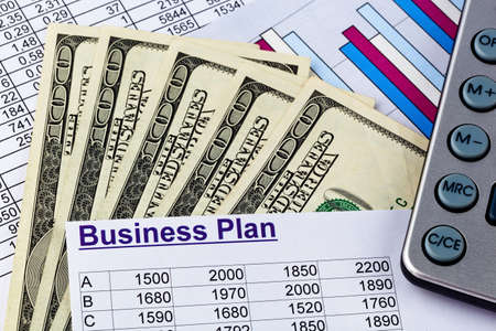 reestablishment: a business plan for starting a business. ideas and strategies for self-employment. dollars and calculators