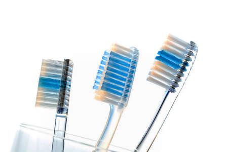 peoplesoft: several toothbrushes in a cup waiting for the teeth cleaning.