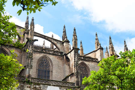 cathedrale: spain, andalusia  the cathedral  santa maria de la sede   one of the landmarks of the city