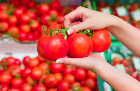local supply: fresh red tomatoes in the fresh shelf of a supermarket  Stock Photo