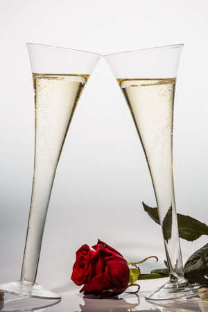 celebratory: champagne or sparkling wine in a champagne glass with red rose  symbolic photo for celebrations, anniversaries, valentine s day, birthday  Stock Photo