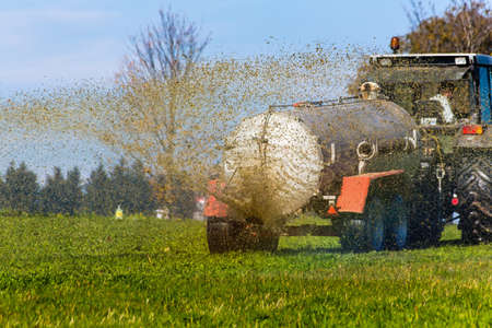 agricultural area: a tractor with manure fertilizes a field in autumn