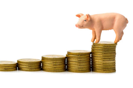 a pig standing on a stack of coins  rising feed costs in agriculture  diminishing returns for pork Stock Photo - 17121895
