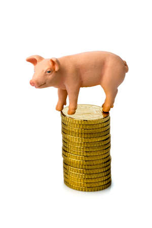 a pig standing on a stack of coins  rising feed costs in agriculture  diminishing returns for pork Stock Photo - 17121886