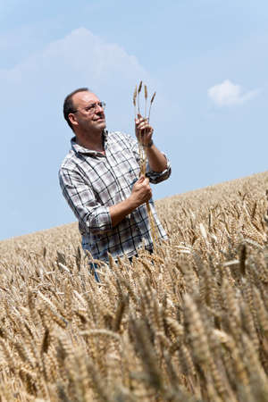 a farmer - farmer in the cereal box