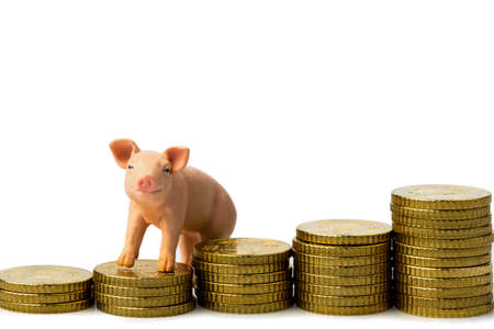 a pig standing on a stack of coins  rising feed costs in agriculture  diminishing returns for pork Stock Photo - 17633739