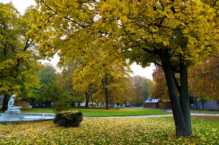 the linz volksgarten  upper austria  in the fall  autumnal landscape Stock Photo - 18598710